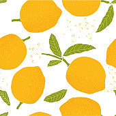 Tropical seamless pattern with fresh yellow lemons, leaves on white background. Bright citrus fruit. Cute doodle hand drawn texture.