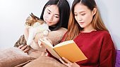 Young beautiful Asian women lesbian couple lover reading book and playing cute cat pet in living room at home with smiling face.Concept of LGBT sexuality with happy lifestyle together.