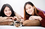 Young beautiful Asian women lesbian couple lover playing cute cat pet in bed room at home with smiling face.Concept of LGBT sexuality with happy lifestyle together.