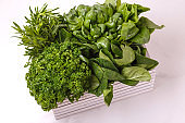 parsley, spinach, thyme, mint, estragon, basil herbs in wooden box