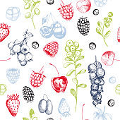 Vector pattern with hand drawn  berries.