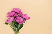Bunch of peonies on a beige background.