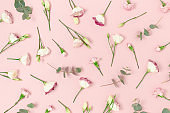 Pattern made of eustoma, carnation flowers and eucalyptus. Floral composition on a pink pastel background.