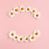 Wreath made of white chamomile flowers on a pink pastel background