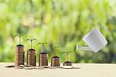 Banking and finance, Saving money concept: Water being poured on green sprout on rows of increasing coins on wood table in the natural green background. Depicts asset security for sustainable growth.