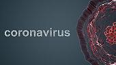Abstract corona Virus Molecular Structure