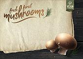 Fresh forest mushrooms on wooden table. Vector illustration