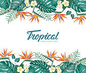 Tropical flower frame with summer holidays text. Happy holiday invitation card with floral garland and calligraphic text - Tropical.