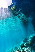 Undersea POV snells window sunlight background