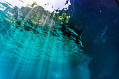 Underwater point of view sunbeams sunlight water surface background copy space