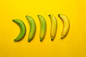 green to yellow banana in maturing process fruit food background
