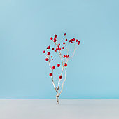 Minimal Christmas tree made of winter snowy branch and red Christmas decoration on blue background.