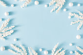 Creative winter nature layout made with snowy branches against pastel blue background.
