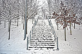 Snow on stairs