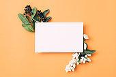white empty paper birthday greeting berries decor
