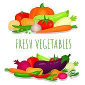 Fresh vegetables banner, poster. Ripe vegetarian food, menu, recipe, cookbook.
