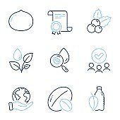Plants watering, Water analysis and Soy nut icons set. Christmas holly, Macadamia nut and Water bottle signs. Vector