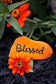 "Vertical image of a rock painted orange with the word, ""blessed"" written on it"
