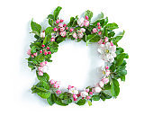 Floral round wreath with apple blossom  isolated on white background.