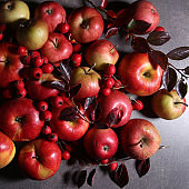 Composition with red apples and hawthorn berries.