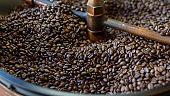 Coffee beans is roasting in roaster machine in coffee shop.