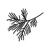 Hand drawn  doodle branch of fir tree isolated on white background. Conifer sketch