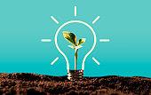 Eco environment, abstract lighting bulb concept