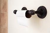 Toilet Paper Shortage in a Home Bathroom