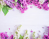 lilac flower on a wooden background frame