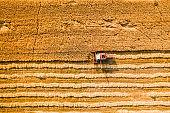수확의 계절