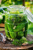 Closeup of pickled cucumbers with garlic and dill