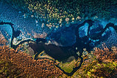 Aerial view of multi colored swamp in autumn