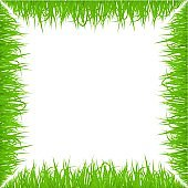 Green early spring grass frame isolated on white background. Realistic eco nature border. Vector