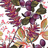 Seamless pattern with pine cones grapes and berries.
