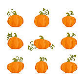 Set of Ripe Pumpkins for Halloween