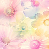 Abstract Colorful Flowers for Background