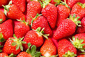 Ripe juicy orgaic strawberries on a red background.