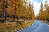 Empty Rural road in the Italian alpine mountains  during autumn