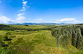 Panoramic aerial view of rural Dumfries and Galloway with pine forest and hills
