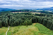 The aerial view of pine forest in the rural area of Dumfries and Galloway south west Scotland