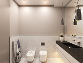 3D render, interior of the toilet in a private cottage. Toilet interior design illustration in traditional modern american style