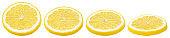 Slices of lemon citrus fruit isolated on white