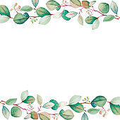 Watercolor floral eucalyptus leaf frame template. Hand drawn spring and summer decorative illustration.