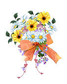 Colorful bouquet of daisy flowers