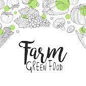 Farm Green Food Banner Template, Can be Used for Organic Food Store, Vegan Products, Farm Market, Restaurant Menu Hand Drawn Vector Illustration