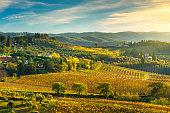 Panzano in Chianti vineyard and panorama at sunset. Tuscany, Italy