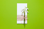 Congratulation and invitation to the holiday. Snowdrop flowers and a note on a green background