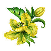 digital botanical illustration of a luxurious yellow tulip flower with green tropical foliage, monstera, curly leaf, isolated on white background. Floral arrangement clip art, detailed blossom macro