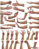 Multiple set of adult person hands gestures isolated on white background