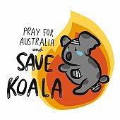 Save injured koala from fire and Pray for Australia cartoon vector illustration